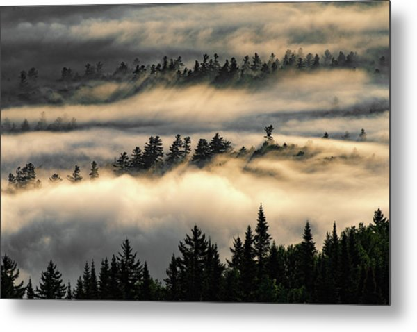 Trees In The Clouds Metal Print