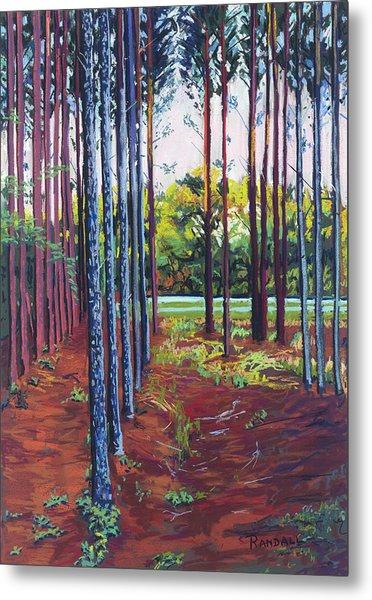Tree Farm Metal Print