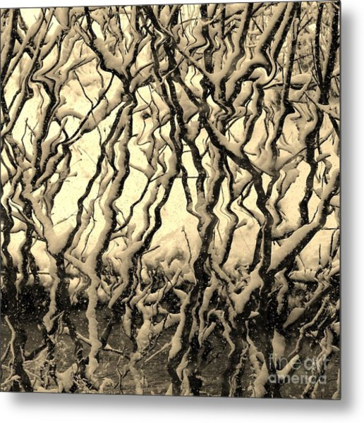 Tree Frenzy Metal Print
