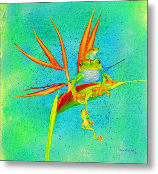 Tree Frog On Birds Of Paradise Square Metal Print