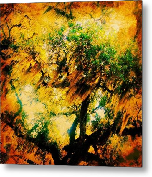 #tree #green #yellow #colourful #sc Metal Print