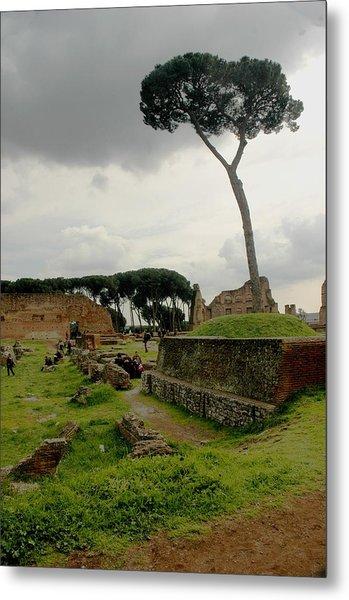 Tree In Ancient Rome Landscape Metal Print by Joseph Cossolini