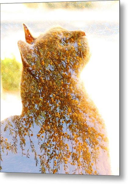 Tree In Cat Metal Print