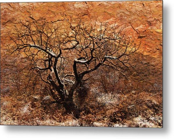 Tree In Winter Metal Print