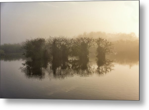 Tree Islands Metal Print