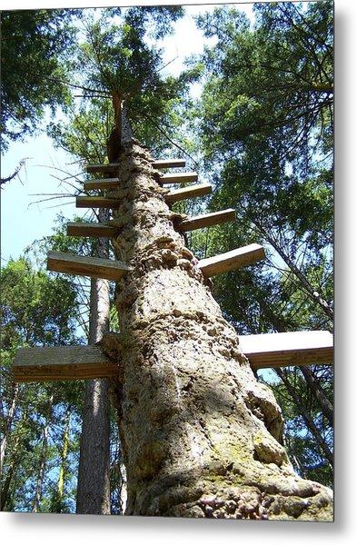 Tree Ladder Metal Print