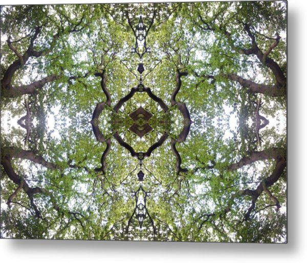 Tree Photo Fractal Metal Print