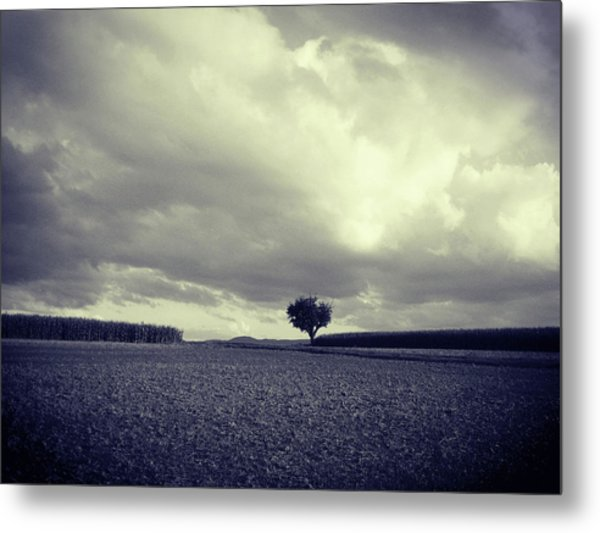 Tree Poem Metal Print