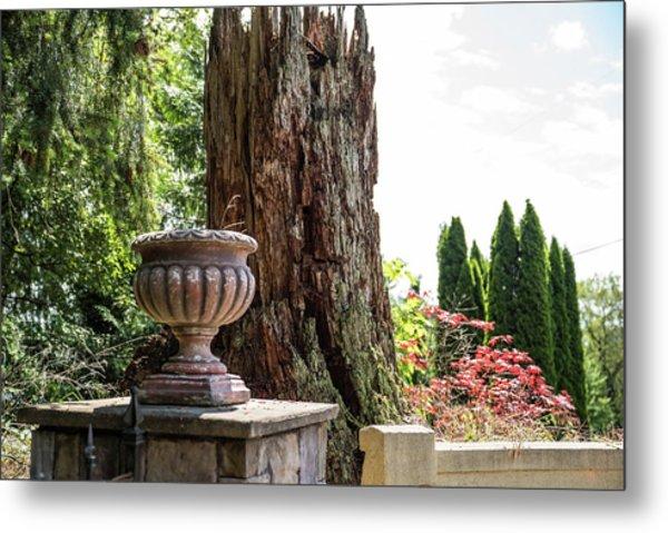 Tree Stump And Concrete Planter Metal Print