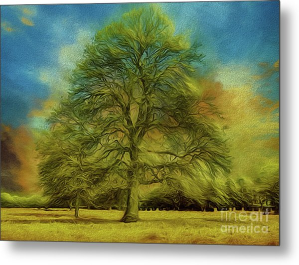 Tree Three Metal Print