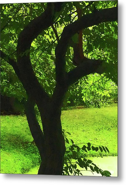 Tree Trunk Green Metal Print