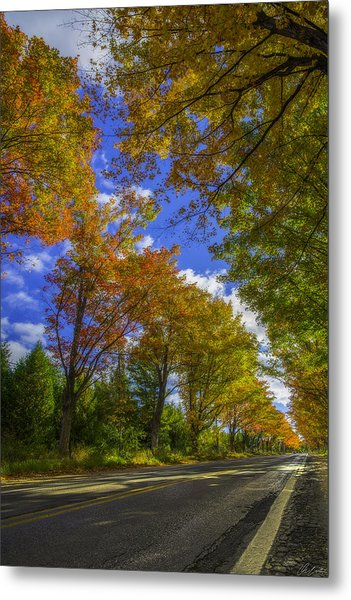 Metal Print featuring the photograph Tree Tunnel On M22 by Owen Weber