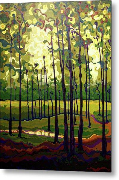 Treecentric Summer Glow Metal Print