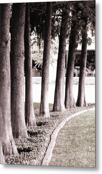 Trees 2 Metal Print by Gracey Tran