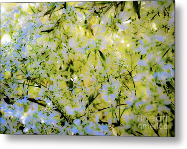 Trees And Flowers Metal Print