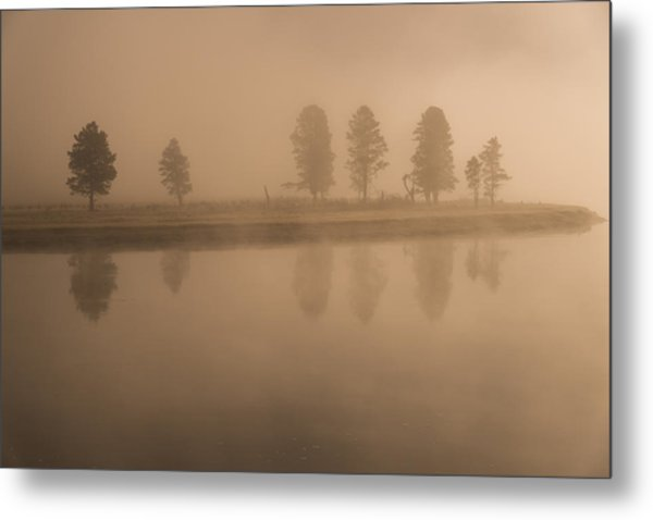 Metal Print featuring the photograph Trees And Fog by Gary Lengyel