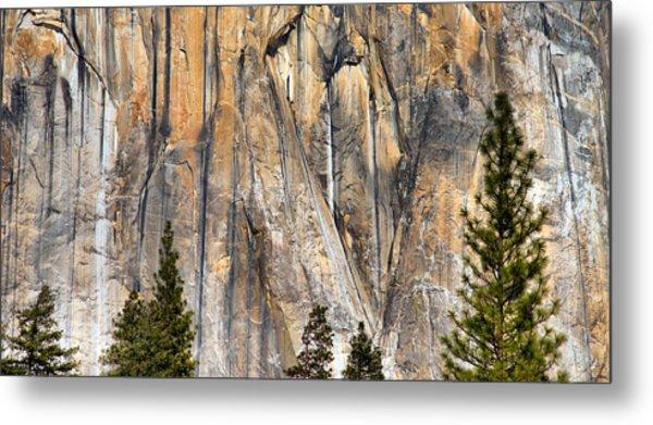 Trees And Granite Metal Print