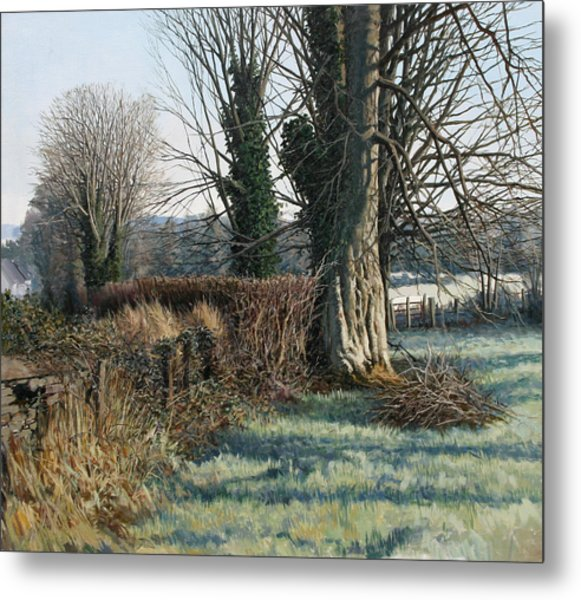 Trees Early Morning In Winter Metal Print by Eugene Conway