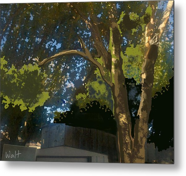 Trees In Park Metal Print