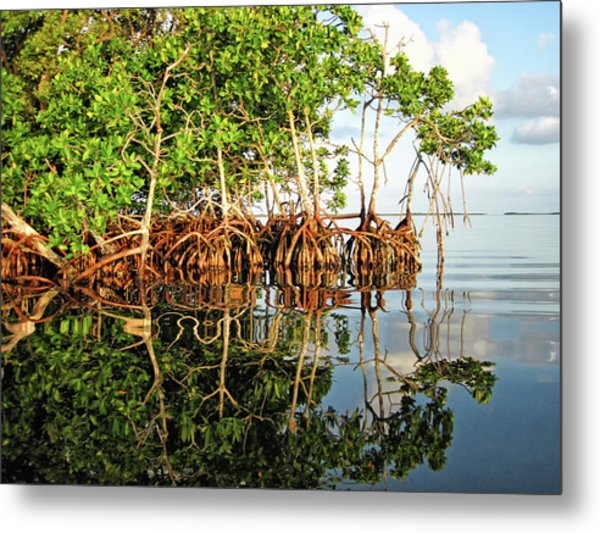 Trees In The Sea Metal Print