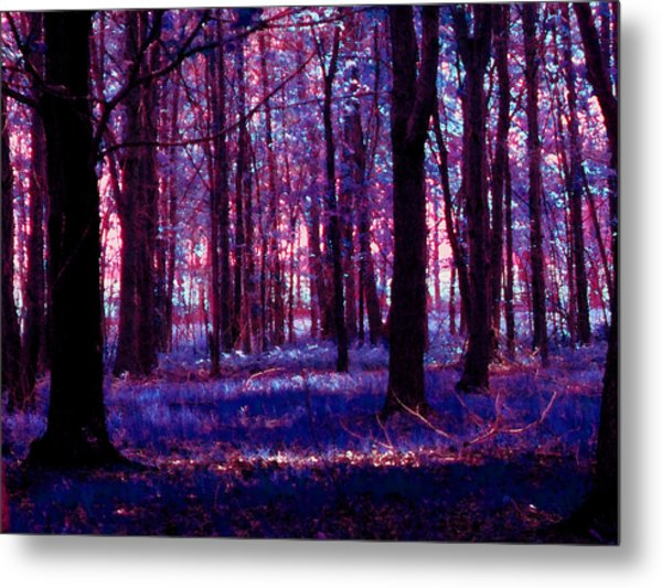 Metal Print featuring the photograph Trees In The Woods In Pink And Blue by Michelle Audas