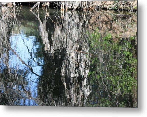 Trees Mirrored In A Lake Metal Print by Carol Hakobian