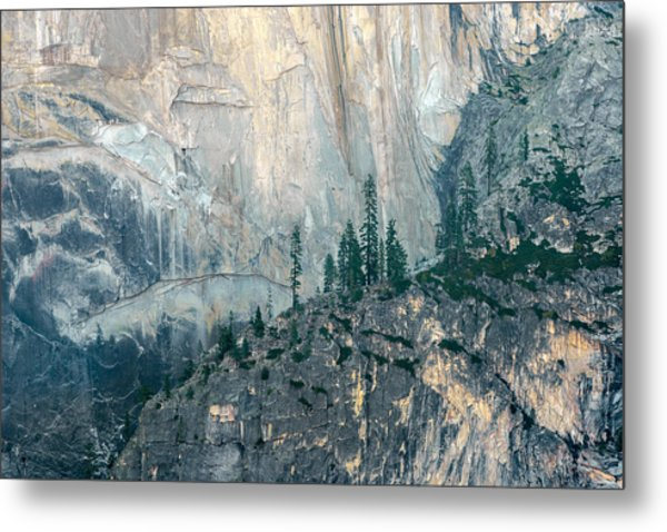 Trees On Ledge Metal Print