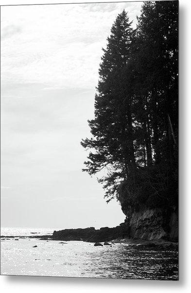 Trees Over The Ocean Metal Print