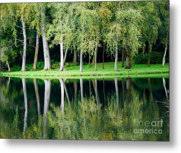 Trees Reflected In Water Metal Print