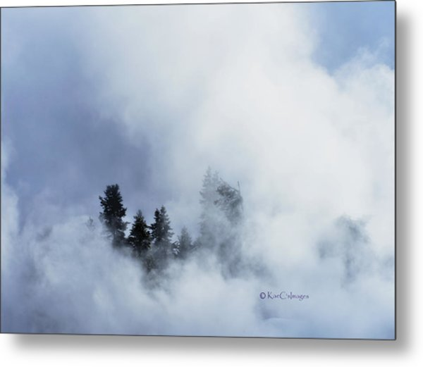 Trees Through Firehole River Mist Metal Print