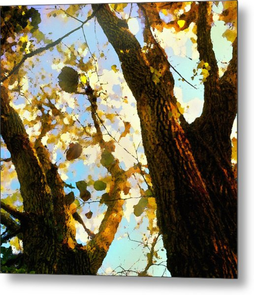 Treetop Abstract-look Up A Tree Metal Print