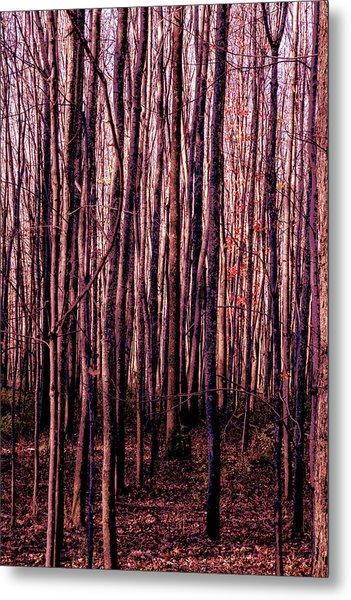 Treez Red Metal Print
