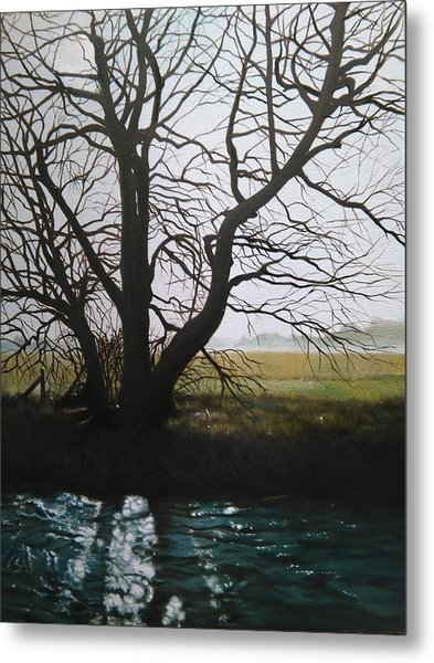Trent Side Tree. Metal Print