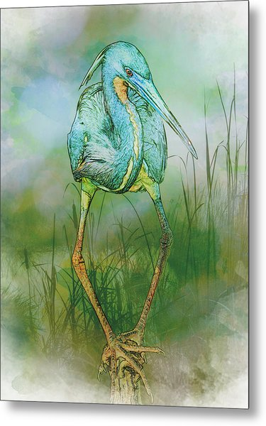 Metal Print featuring the photograph Tri-colored Heron Balancing Act - Colorized by Patti Deters
