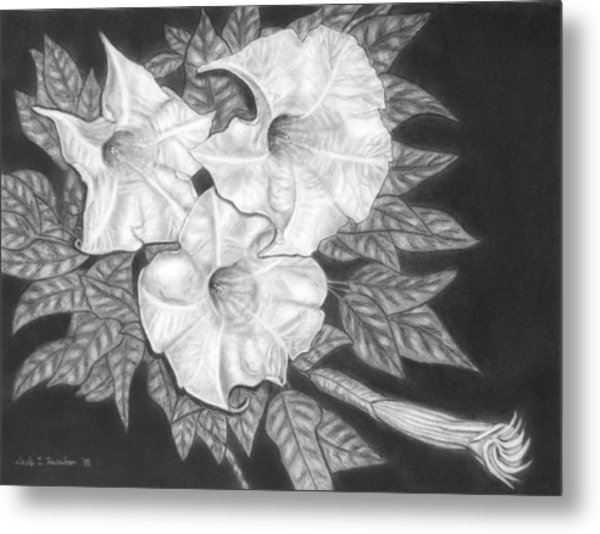 Trio Of Heavenly Blossoms Metal Print by Nicole I Hamilton