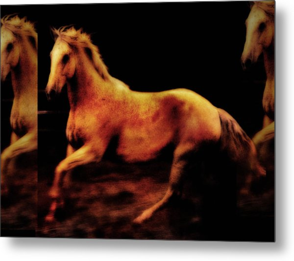 Triple Horse Metal Print by Nick Sokoloff