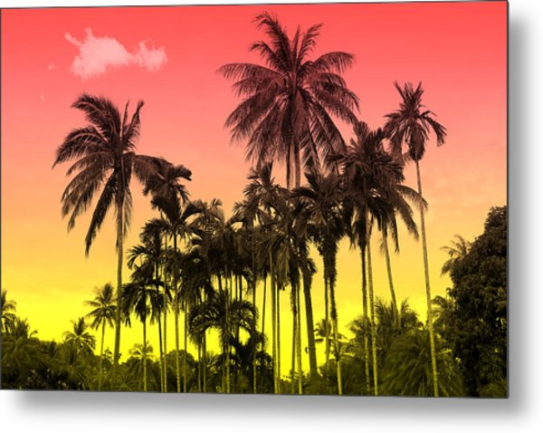 Tropical 9 Metal Print
