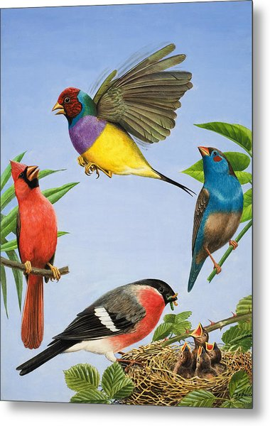 Tropical Birds Metal Print