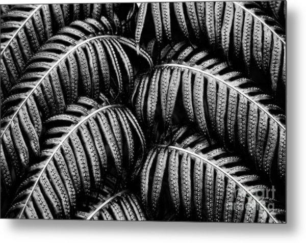 Tropical Fern Black White Metal Print