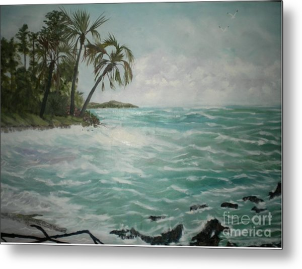 Tropical Island Metal Print by Hal Newhouser