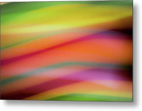 Tropical Sherbet Metal Print