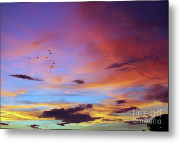 Tropical North Queensland Sunset Splendor  Metal Print