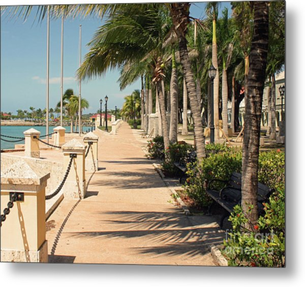 Tropical Walkway Metal Print