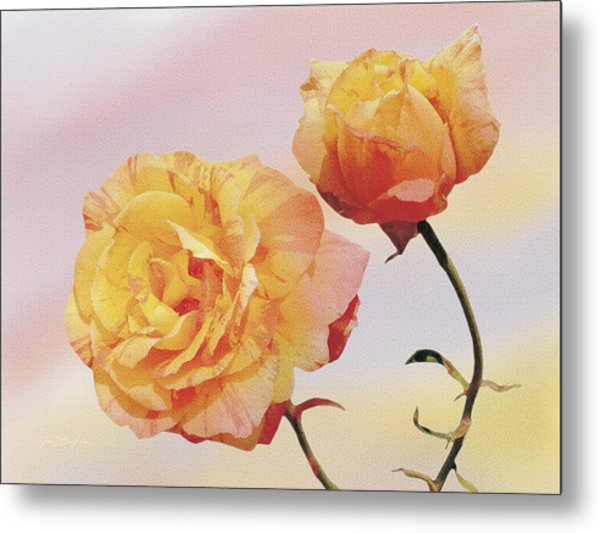 Tropicana Roses Metal Print by Jan Baughman