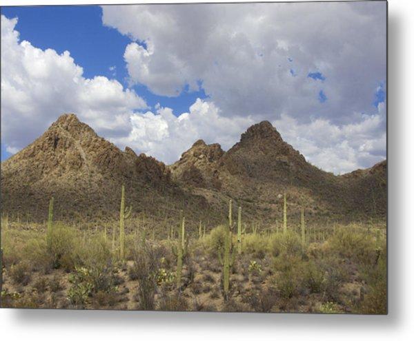Tucson Mountains Metal Print