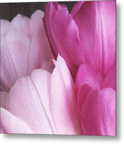Tulip Petals Metal Print