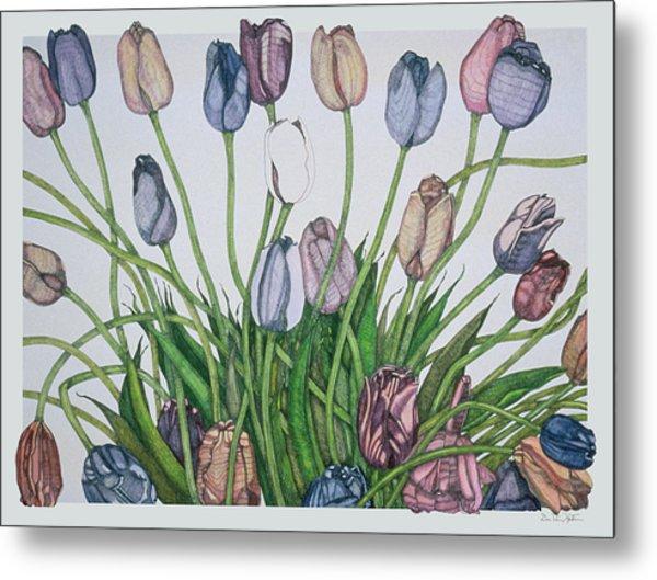 Tulip Serenade  Metal Print