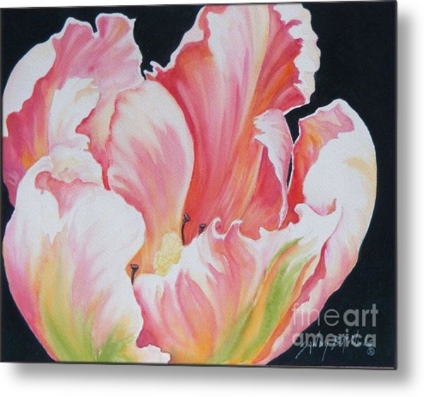 Tulip Sold Metal Print