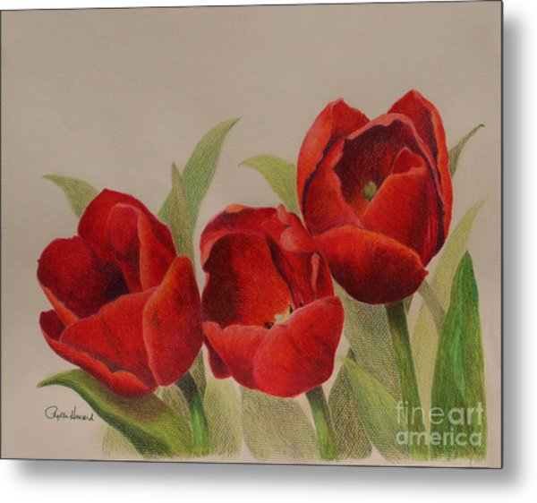 Metal Print featuring the drawing Tulip Trio by Phyllis Howard