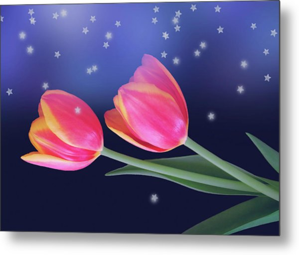 Tulips And Stars Metal Print